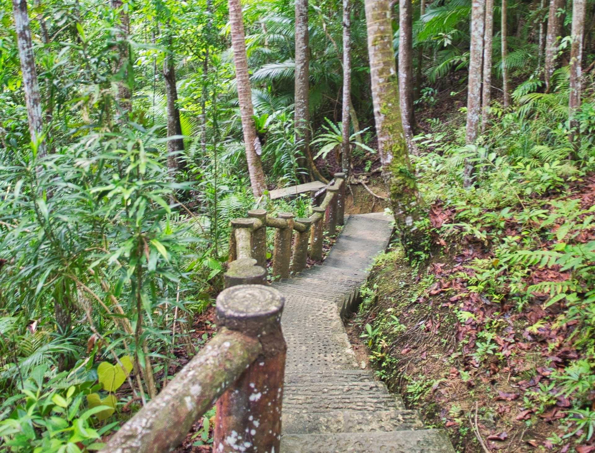 Escaliers menant aux chutes de Mag-Aso